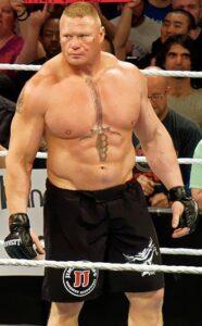 Brock_Lesnar_bet_on_fights_odds_ufc